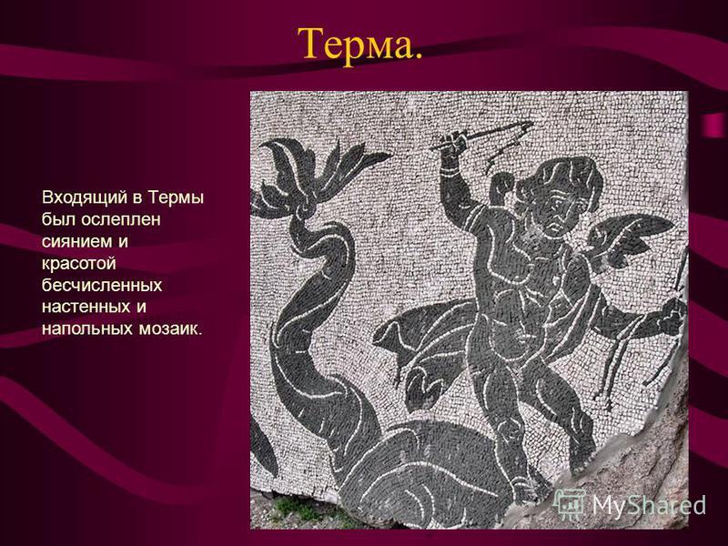 Терма. Входящий в Термы был ослеплен сиянием и красотой бесчисленных настенных и напольных мозаик.