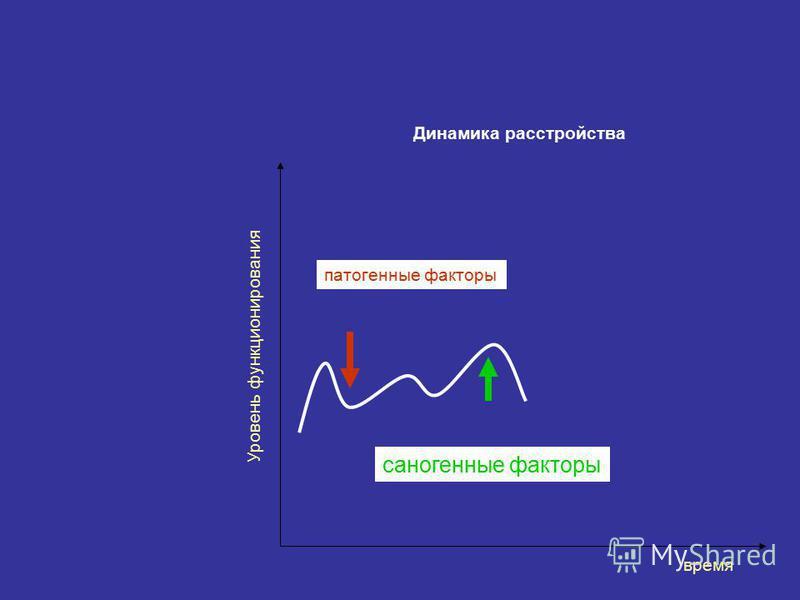 Динамика расстройства время Уровень функционирования патогенные факторы саногенные факторы