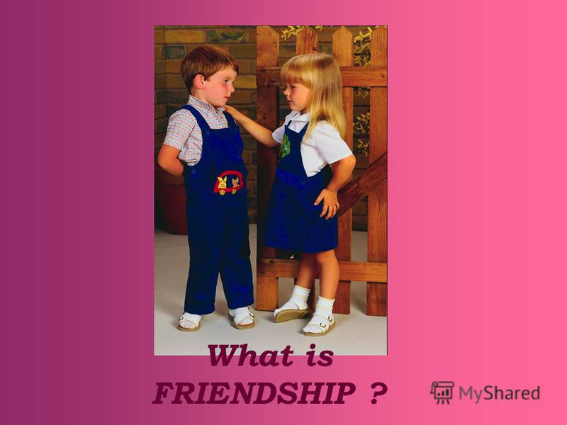 What is FRIENDSHIP ?