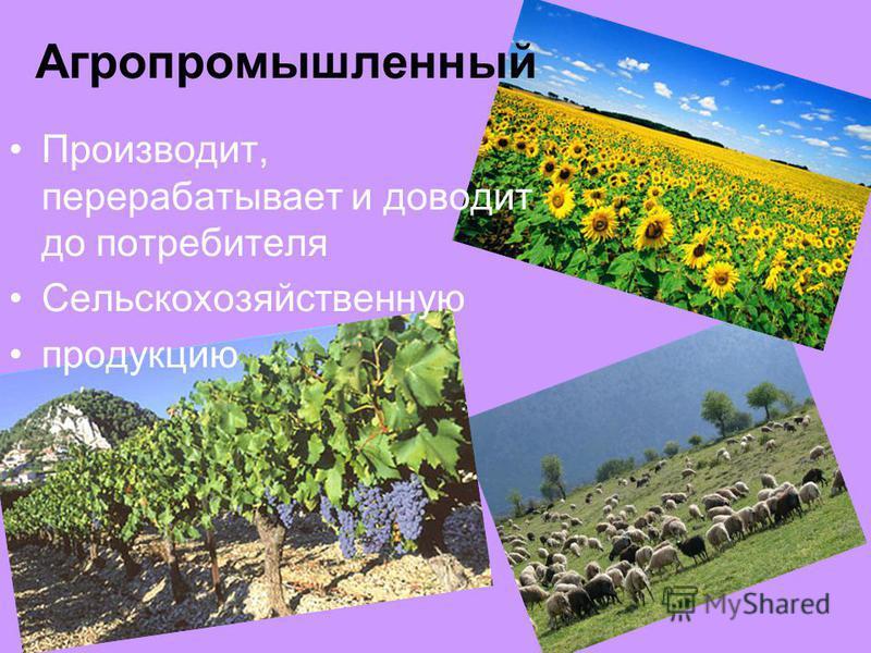 Агропромышленный Производит, перерабатывает и доводит до потребителя Сельскохозяйственную продукцию