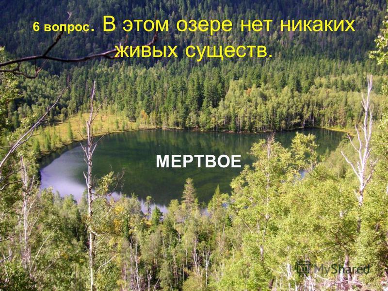 6 вопрос. В этом озере нет никаких живых существ. МЕРТВОЕ