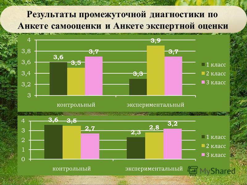 Результаты промежуточной диагностики по Анкете самооценки и Анкете экспертной оценки
