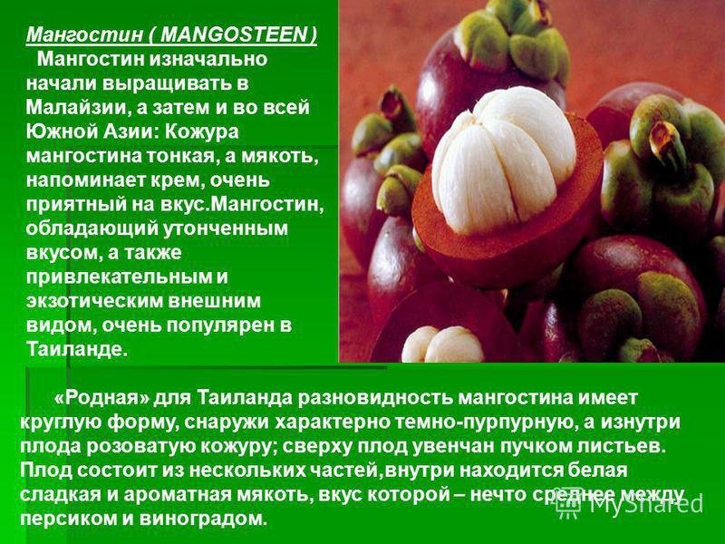 Мангостин ( MANGOSTEEN ) Мангостин изначально начали выращивать в Малайзии, а затем и во всей Южной Азии: Кожура мангостина тонкая, а мякоть, напоминает крем, очень приятный на вкус.Мангостин, обладающий утонченным вкусом, а также привлекательным и э
