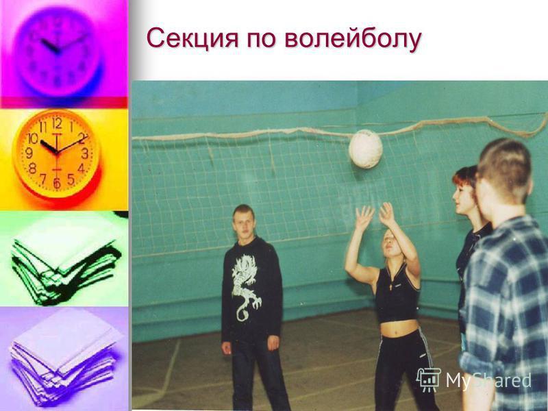Секция по волейболу