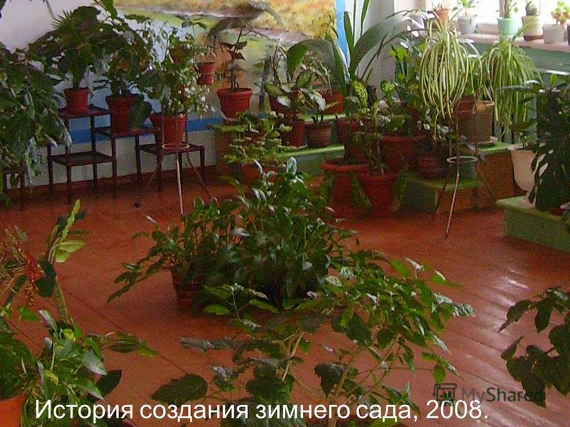 История создания зимнего сада, 2008.