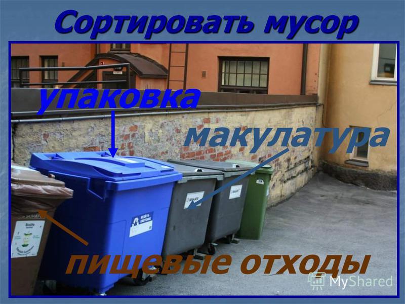 Сортировать мусор пищевые отходы упаковка макулатура