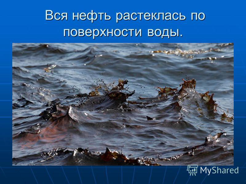 Вся нефть растеклась по поверхности воды. Вся нефть растеклась по поверхности воды.