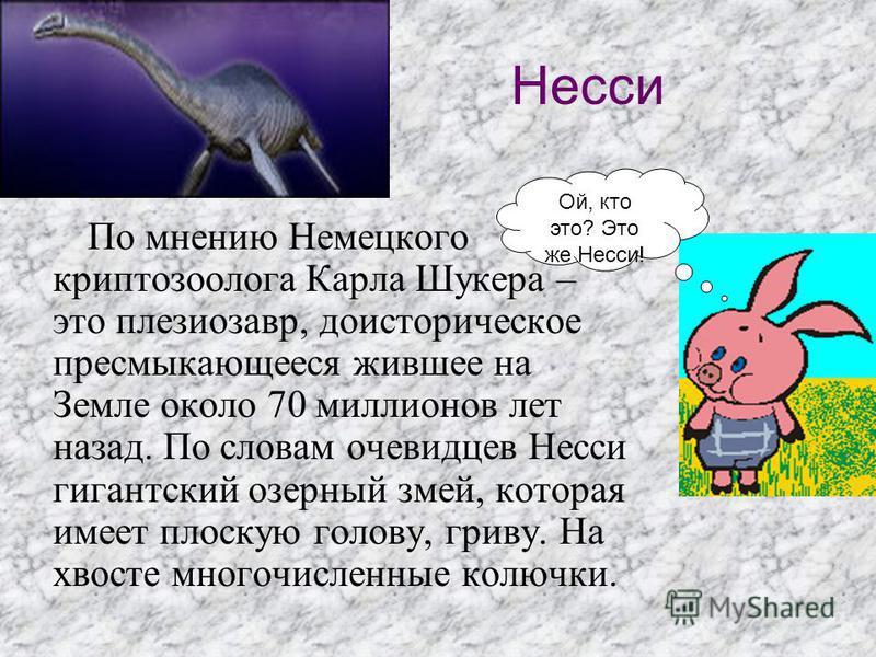 Несси По мнению Немецкого криптозоолога Карла Шукера – это плезиозавр, доисторическое пресмыкающееся жившее на Земле около 70 миллионов лет назад. По словам очевидцев Несси гигантский озерный змей, которая имеет плоскую голову, гриву. На хвосте много