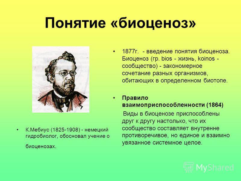 Понятие «биоценоз» 1877 г. - введение понятия биоценоза. Биоценоз (гр. bios - жизнь, koinos - сообщество) - закономерное сочетание разных организмов, обитающих в определенном биотопе. Правило взаимоприспособленности (1864) Виды в биоценозе приспособл