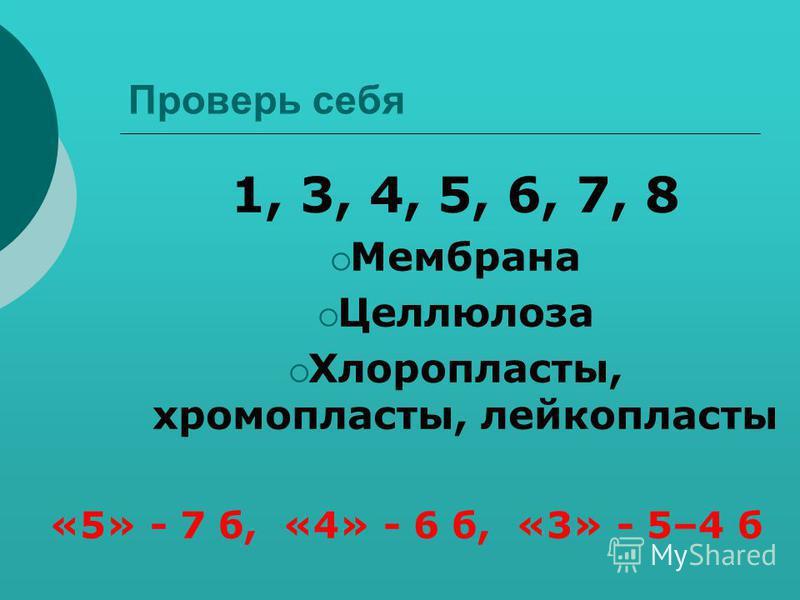 Проверь себя 1, 3, 4, 5, 6, 7, 8 Мембрана Целлюлоза Хлоропласты, хромопласты, лейкопласты «5» - 7 б, «4» - 6 б, «3» - 5–4 б