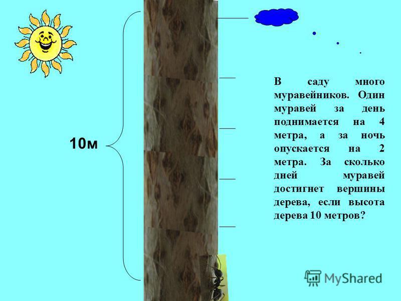 10 м В саду много муравейников. Один муравей за день поднимается на 4 метра, а за ночь опускается на 2 метра. За сколько дней муравей достигнет вершины дерева, если высота дерева 10 метров?