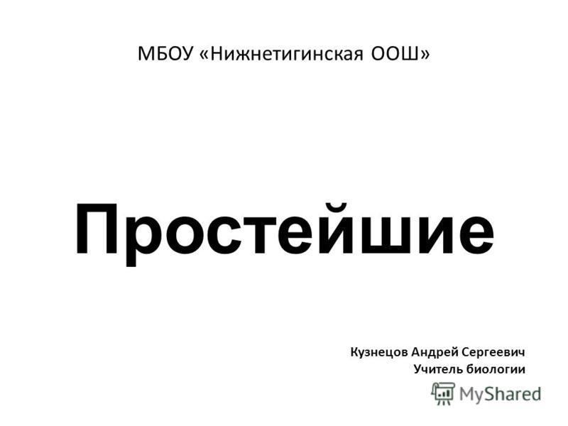 МБОУ «Нижнетигинская ООШ» Простейшие Кузнецов Андрей Сергеевич Учитель биологии