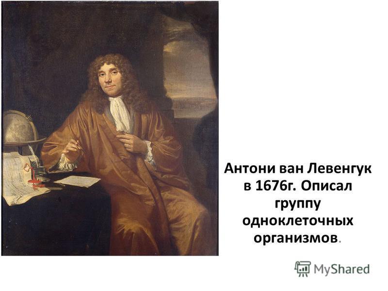 Антони ван Левенгук в 1676 г. Описал группу одноклеточных организмов.