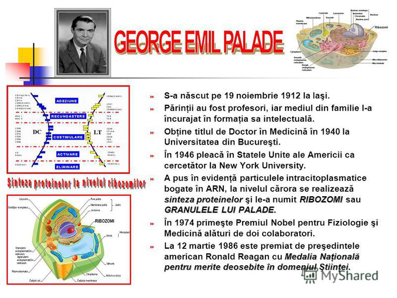 S-a născut pe 19 noiembrie 1912 la Iaşi. Părinţii au fost profesori, iar mediul din familie l-a încurajat în formaţia sa intelectuală. Obţine titlul de Doctor în Medicină în 1940 la Universitatea din Bucureşti. În 1946 pleacă în Statele Unite ale Ame