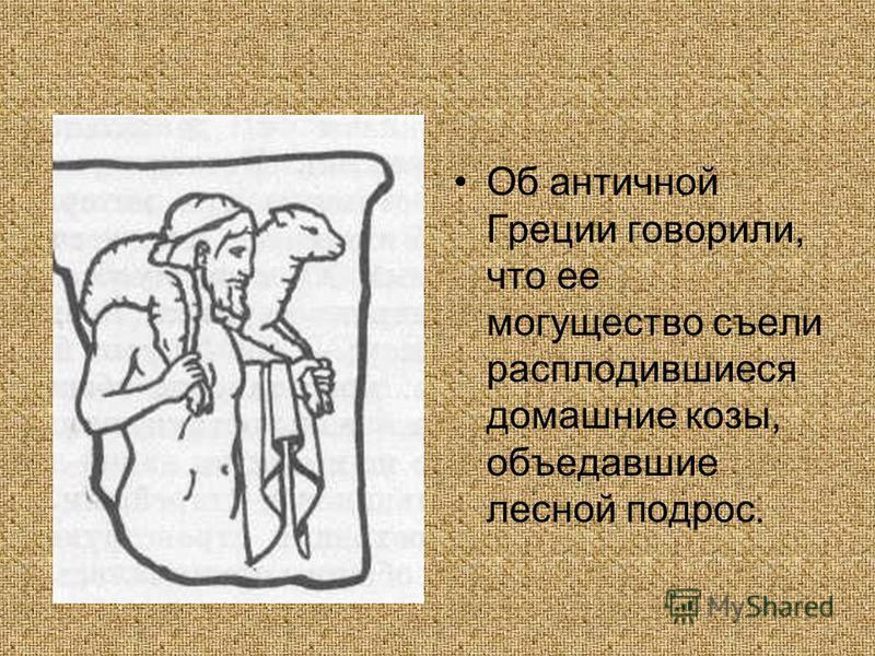 Об античной Греции говорили, что ее могущество съели расплодившиеся домашние козы, объедавшие лесной подрос.