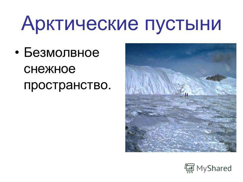 Арктические пустыни Безмолвное снежное пространство.