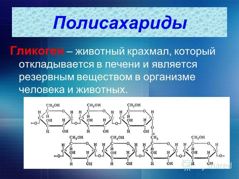 Гликоген – животный крахмал, который откладывается в печени и является резервным веществом в организме человека и животных. Полисахариды