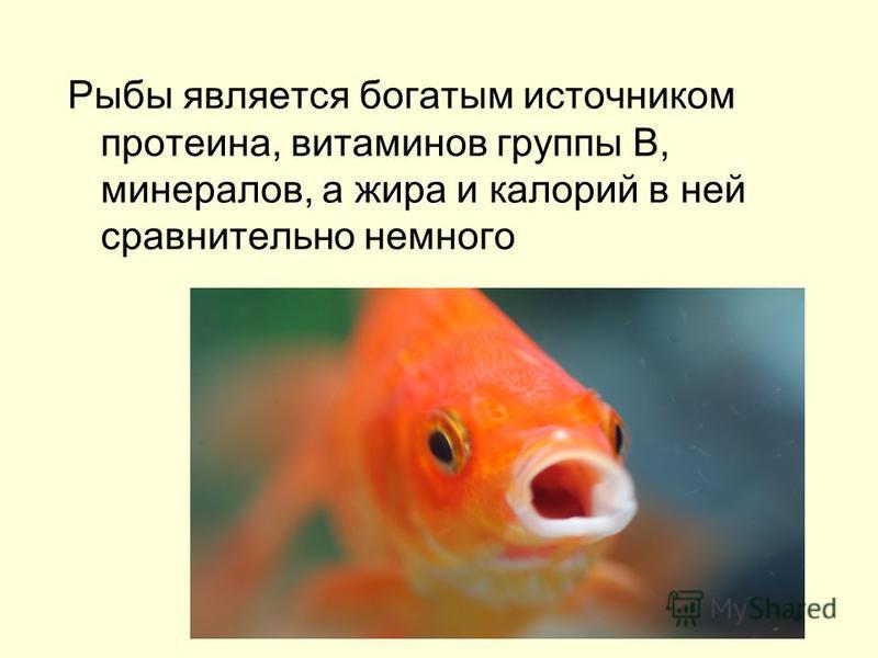 Рыбы является богатым источником протеина, витаминов группы В, минералов, а жира и калорий в ней сравнительно немного