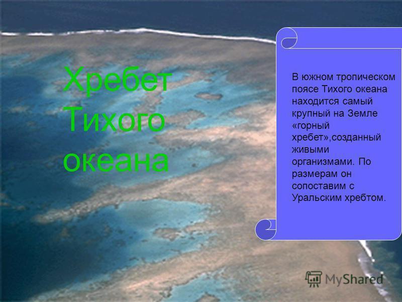 В южном тропическом поясе Тихого океана находится самый крупный на Земле «горный хребет»,созданный живыми организмами. По размерам он сопоставим с Уральским хребтом. Хребет Тихого океана