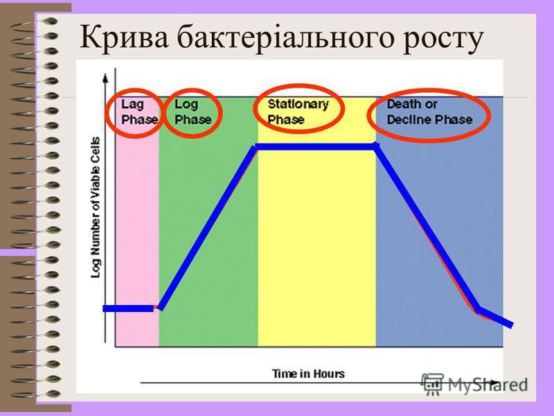 Ріст мікробної популяції Виділяють чотири основні фази росту 1) Lag фаза 2) Log або логарифмічна фаза 3) Стаціонарна фаза 4) Фаза відмирання