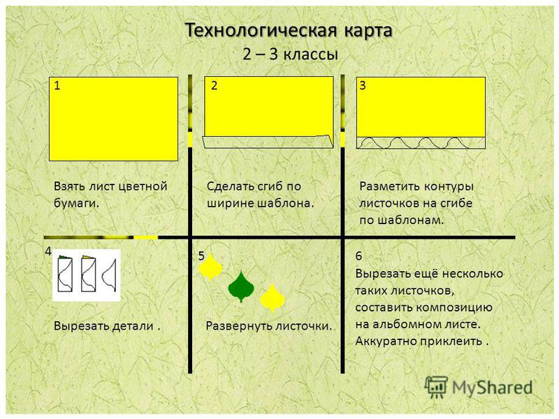 Технологическая карта 2 – 3 классы 3 Взять лист цветной бумаги. Сделать сгиб по ширине шаблона. Разметить контуры листочков на сгибе по шаблонам. 4 Вырезать детали. Развернуть листочки. 56 Вырезать ещё несколько таких листочков, составить композицию