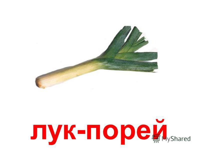 лук зелёный