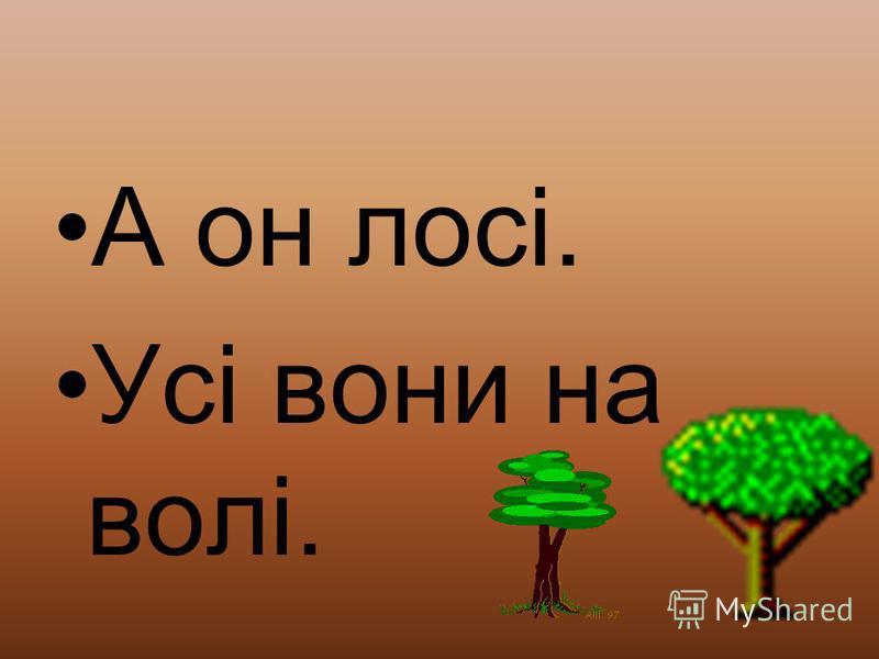 носила лісові