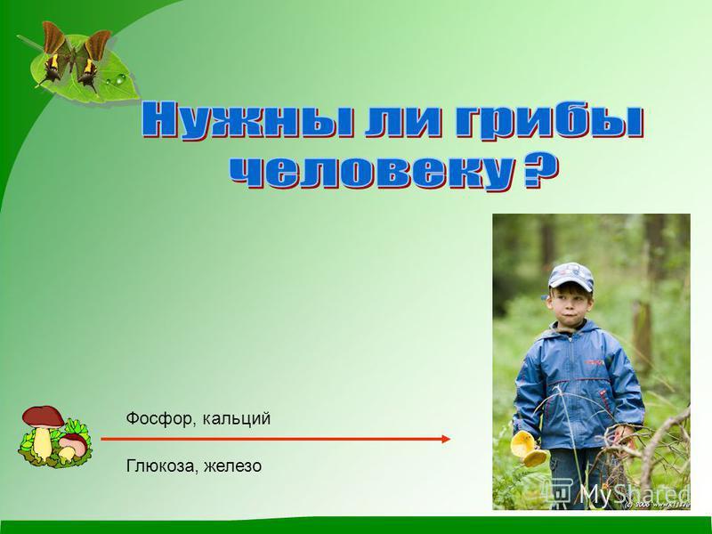 Фосфор, кальций Глюкоза, железо