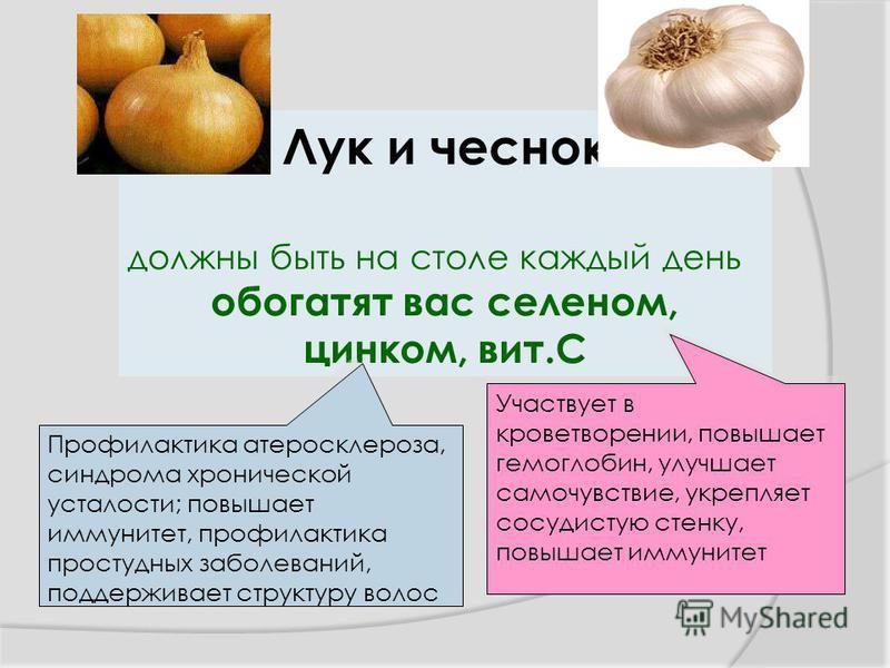 Лук и чеснок должны быть на столе каждый день обогатят вас селеном, цинком, вит.С Профилактика атеросклероза, синдрома хронической усталости; повышает иммунитет, профилактика простудных заболеваний, поддерживает структуру волос Участвует в кроветворе