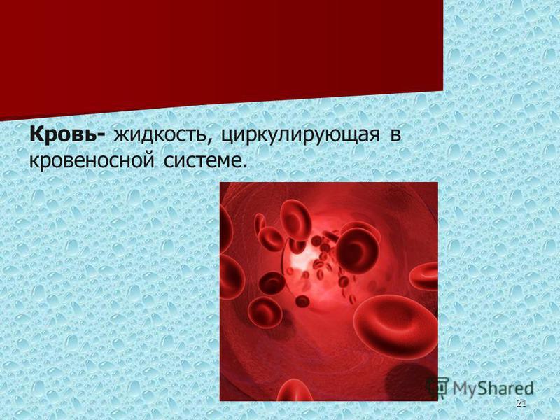 21 Кровь- жидкость, циркулирующая в кровеносной системе.