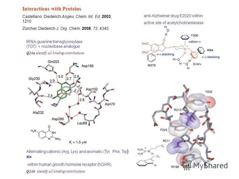 Interactions with Proteins Castellano, Diederich Angew. Chem. Int. Ed. 2003, 1210 Zürcher, Diederich J. Org. Chem. 2008, 73, 4345 Alternating cationic (Arg, Lys) and aromatic (Tyr, Phe, Trp ) => within human growth hormone receptor (hGHR) Q24b identi