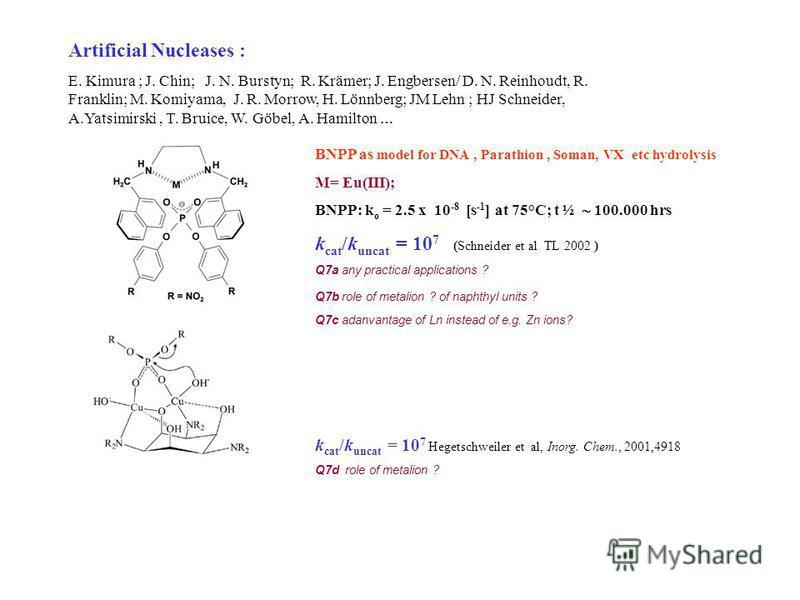 Artificial Nucleases : E. Kimura ; J. Chin; J. N. Burstyn; R. Krämer; J. Engbersen/ D. N. Reinhoudt, R. Franklin; M. Komiyama, J. R. Morrow, H. Lönnberg; JM Lehn ; HJ Schneider, A.Yatsimirski, T. Bruice, W. Göbel, A. Hamilton … BNPP as model for DNA,
