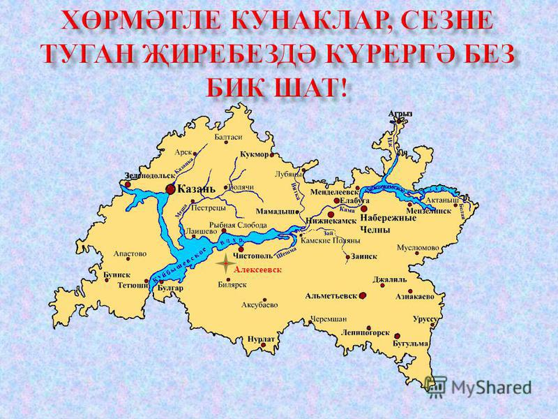 Алексеевс к
