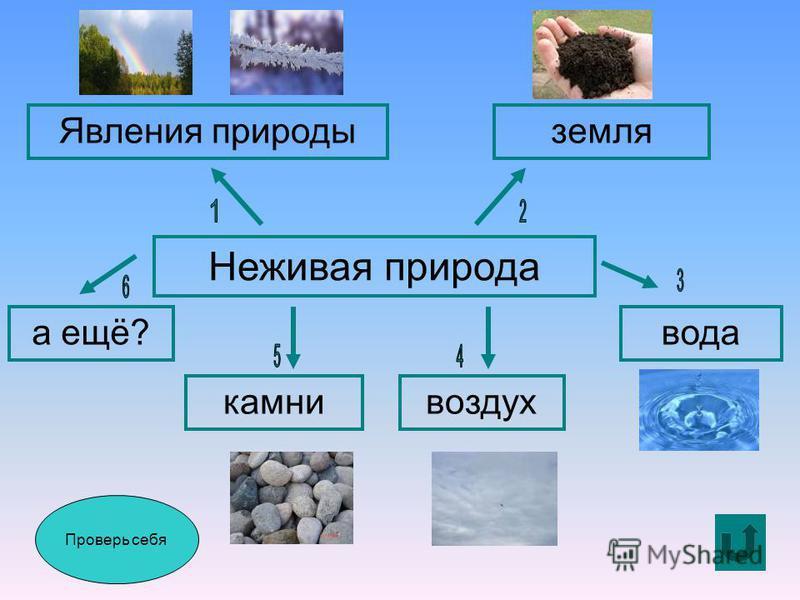 Проверь себя Неживая природа Явления природы земля а ещё?вода воздух камни