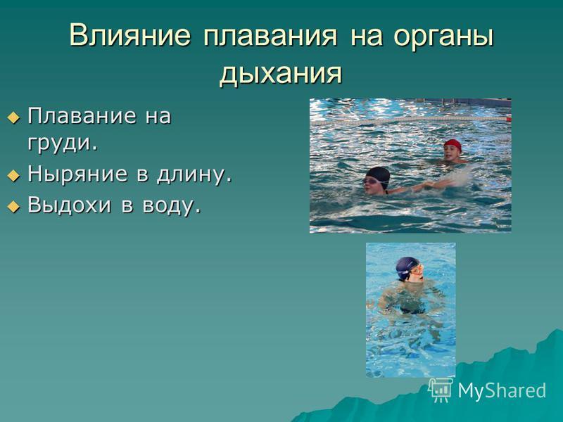 Влияние плавания на органы дыхания Плавание на груди. Плавание на груди. Ныряние в длину. Ныряние в длину. Выдохи в воду. Выдохи в воду.