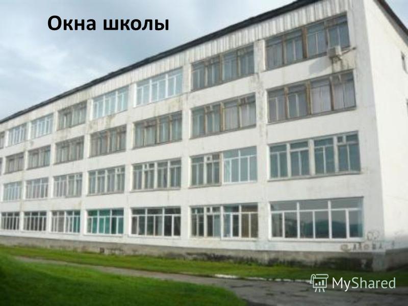 Окна школы