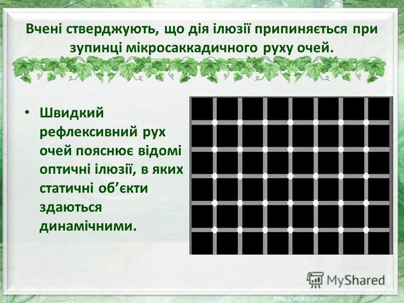 Вчені стверджують, що дія ілюзії припиняється при зупинці мікросаккадичного руху очей. Швидкий рефлексивний рух очей пояснює відомі оптичні ілюзії, в яких статичні обєкти здаються динамічними.