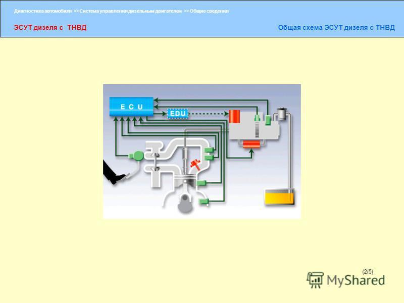 Диагностика автомобиля >> Система управления дизельным двигателем >> Общие сведения ЭСУТ дизеля с ТНВДОбщая схема ЭСУТ дизеля с ТНВД (2/5)