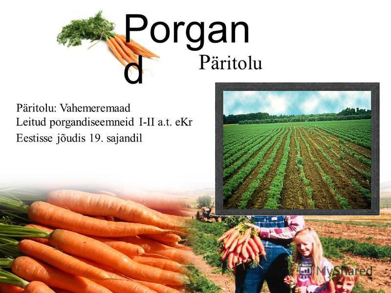 Porgand Daucus sativus/ Daucus carota Päritolu Kasvutingimused Kasutamine Tähtsus Porgandi välimus Kasutatud kirjandus