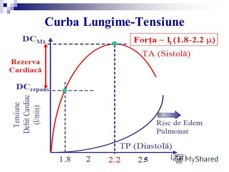 Curba Lungime-Tensiune