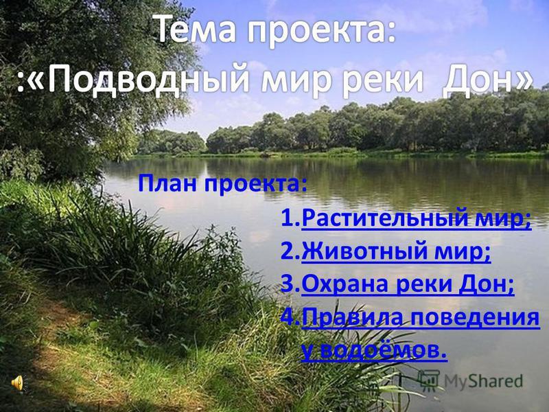 План проекта: 1. Растительный мир;Растительный мир; 2. Животный мир;Животный мир; 3. Охрана реки Дон;Охрана реки Дон; 4. Правила поведения у водоёмов.Правила поведения у водоёмов.