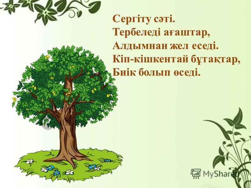 Сергіту сәті. Тербеледі ағаштар, Алдымнан жел еседі. Кіп-кішкентай бұтақтар, Биік болып өседі.