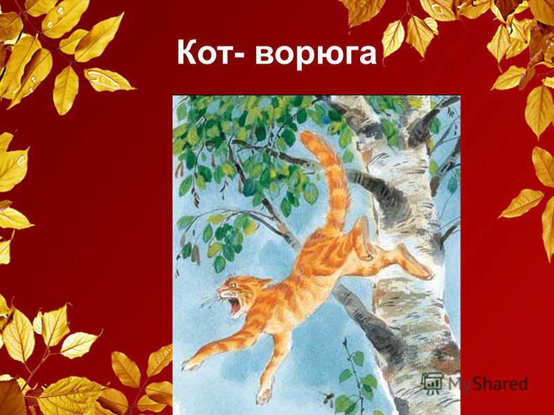 Кот- ворюга