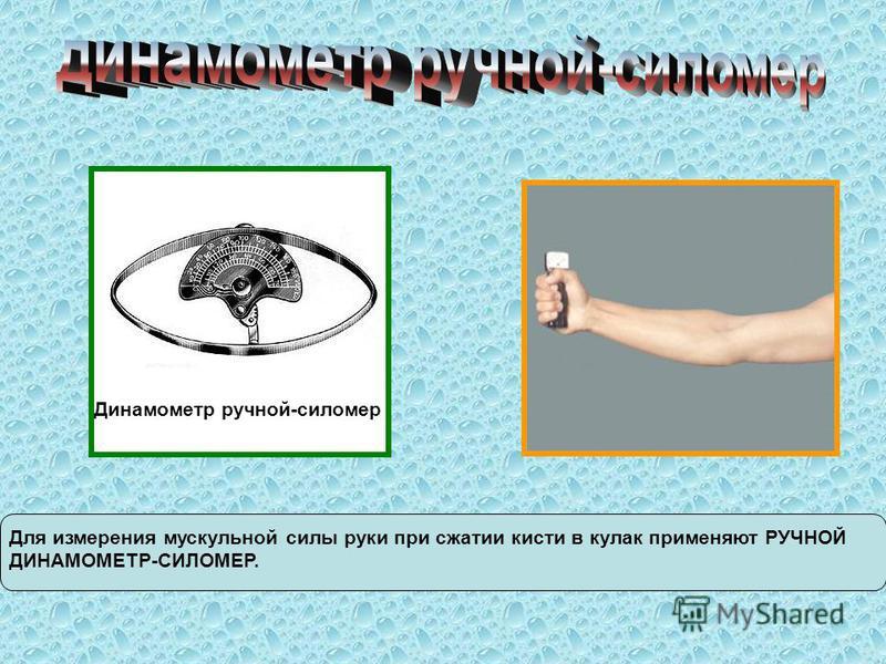Динамометр ручной-сипомер Для измерения мускульной силы руки при сжатии кисти в кулак применяют РУЧНОЙ ДИНАМОМЕТР-СИЛОМЕР.