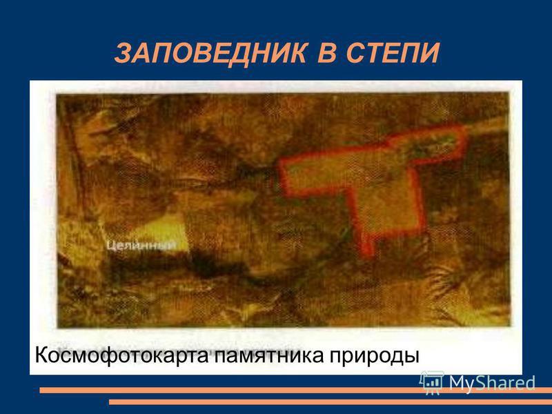 Космофотокарта памятника природы ЗАПОВЕДНИК В СТЕПИ