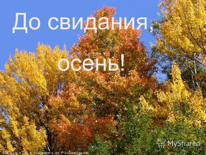 До свидания, осень! До свидания, осень!