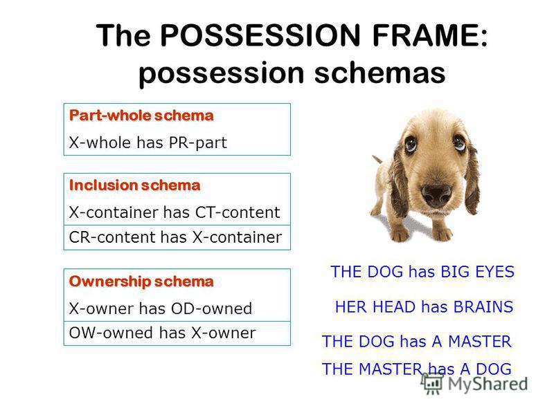 The POSSESSION FRAME: possession schemas Part-whole schema X-whole has PR-part CR-content has X-container Ownership schema X-owner has OD-owned OW-owned has X-owner HER HEAD has BRAINS THE DOG has BIG EYES THE DOG has A MASTER THE MASTER has A DOG In