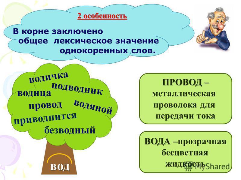 УШ ЕК НИЦ А Н ЫЙ 1 особенность Корень – главная значимая часть слова.