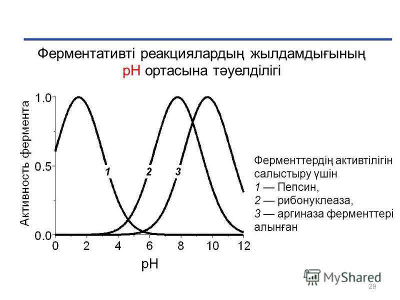 29 Ферментативті реакциялардың жылдамдығының рН ортасына тәуелділігі Ферменттердің активтілігін салыстыру үшін 1 Пепсин, 2 рибонуклеаза, 3 аргиназа ферментері алынған