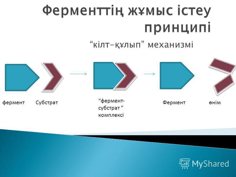 Ферменттің жұмыс істеу принципі кілт-құлып механизмі фермент Субстрат фермент- субстрат комплексі Ферментөнім